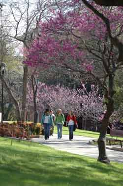 Students on Redbud Lane
