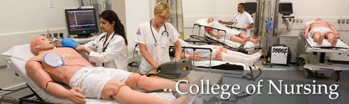 College University Texas Woman s University College