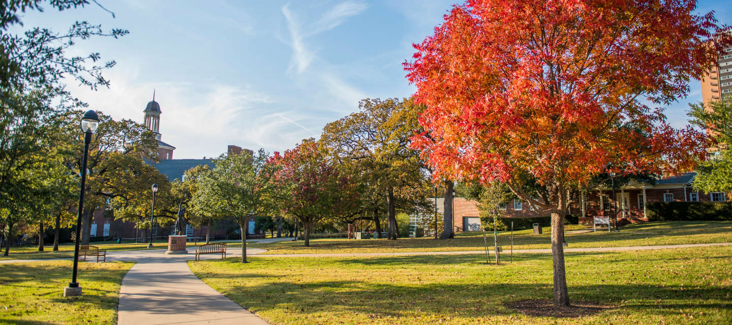 Looking across campus in the fall with leaves turning read and yellow
