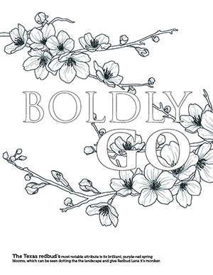 Boldly Go with redbuds surrounding it coloring page.