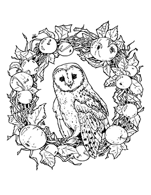 A barn owl coloring sheet resting on a decorated wreath.