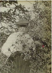 Black and white photo of Albert Ruth collecting plant samples