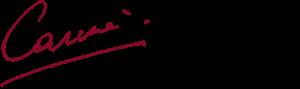 signature of Chancellor Carine Feyten