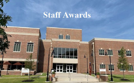 Link to staff awards