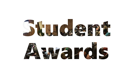 Link to student awards