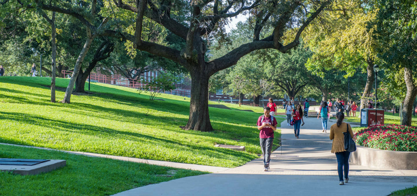 Students walking across campus on a shaded trail.