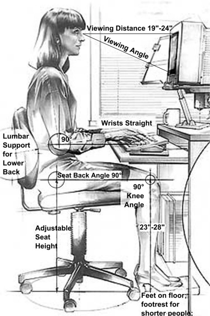 Drawing of person sitting at a desk working on a computer.