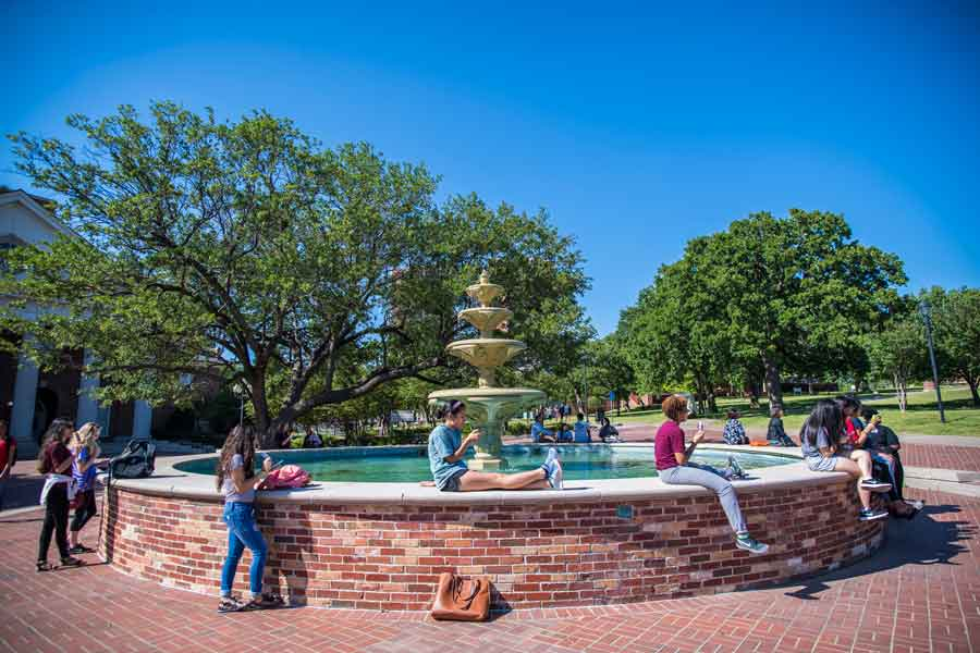 Students gathered at the TWU fountain on a sunny day.
