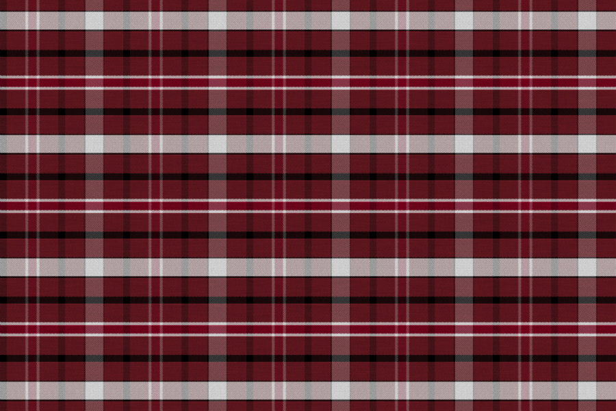 A swatch of plaid print with maroon, white and black stripes.