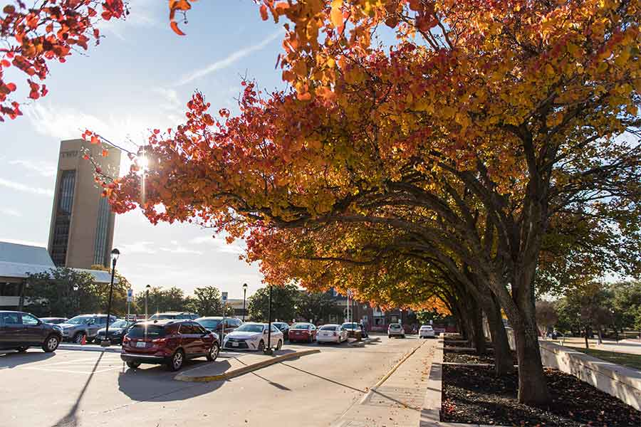 A parking lot on a sunny Fall day on the TWU Denton campus.