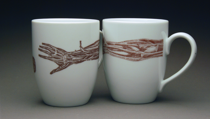 2 mugs with an anatomy illustration of an arm stretching across